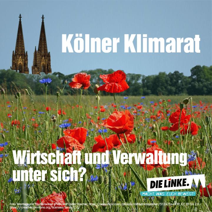 """Der Klimarat der Stadt Köln: Rückwärtsgewandt und """"unpolitisch"""""""